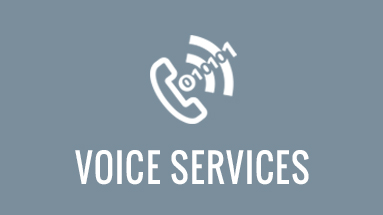 Hosted IP PBX, VOIP, Sip and PRI Services